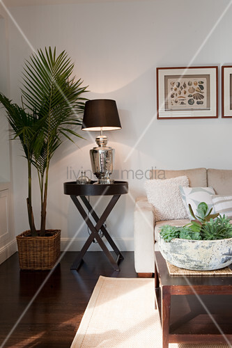 Potted Palm Tree Next To Table Lamp On Side In Corner Of Modern Living Room