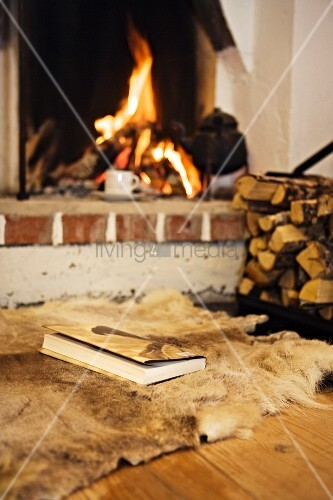 Book lying on animal skin rug in front of open fire