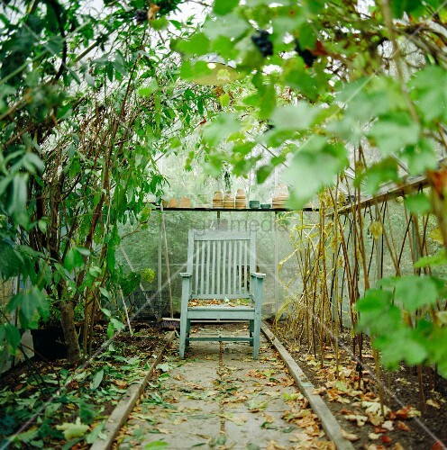 holzstuhl im gew chshaus bild kaufen living4media. Black Bedroom Furniture Sets. Home Design Ideas