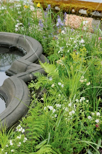 Blooming wild flowers around a curved, stone water feature