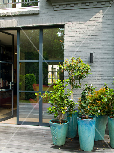 Foliage plants in turquoise stoneware planters in front of terrace doors
