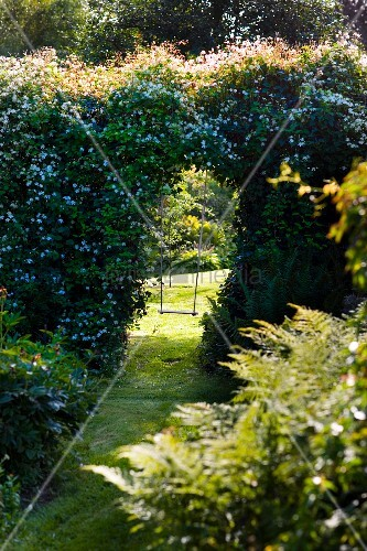 Flowering garden with view of swing through opening in hedge