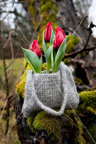 Tulips in crocheted and felted bag