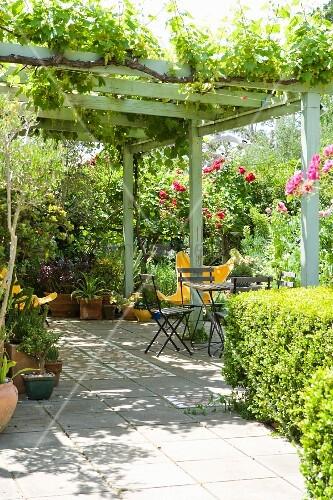 bewachsene pergola auf terrasse mit sitzplatz vor bl henden rosenb schen bild kaufen. Black Bedroom Furniture Sets. Home Design Ideas
