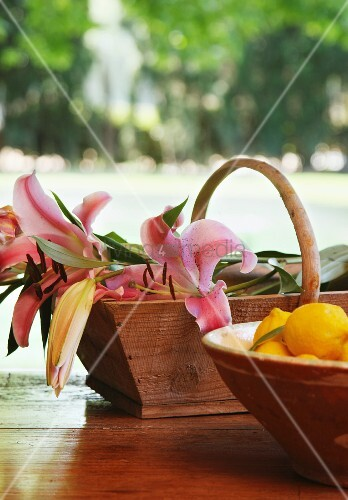 Dish of lemons and wooden trug of lilies