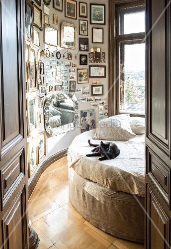 Black cat on round bed next to curved wall covered in many pictures