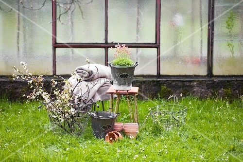 Branches of fruit blossom in wire basket, terracotta pots, rustic woollen blanket and flowering plant on stool on green spring lawn