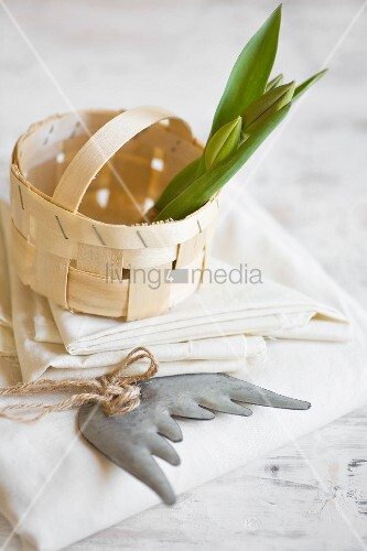 Tulips bulbs in chip-wood basket on stack of napkins