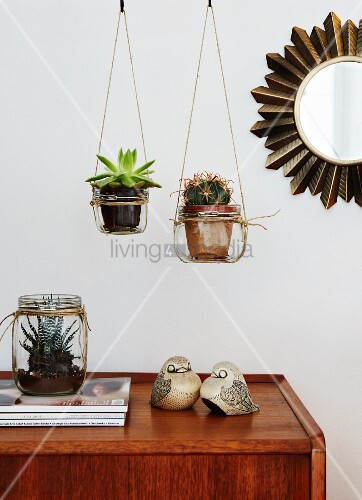 Succulents in hanging planters made from mason jars and parcel string