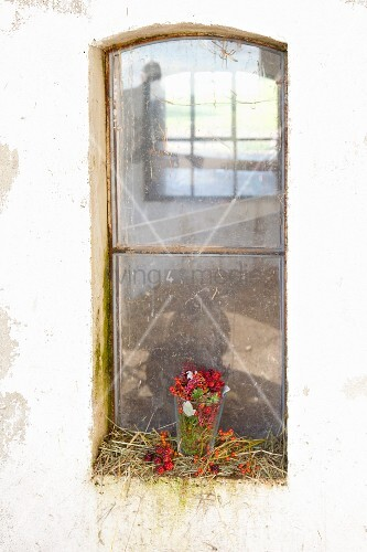 Rose hips, blackberries, heather and moss in glass jar on windowsill