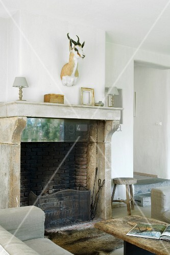 Open fireplace and hunting trophy in rustic interior