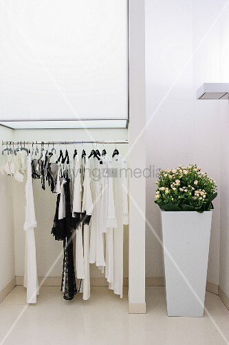 Clothes rack and tall planter in white interior