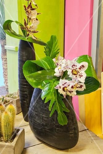 Ikebana arrangement of orchids in black vases