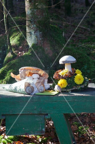 Wooden toadstool and paper bag of button mushrooms on bench in woods