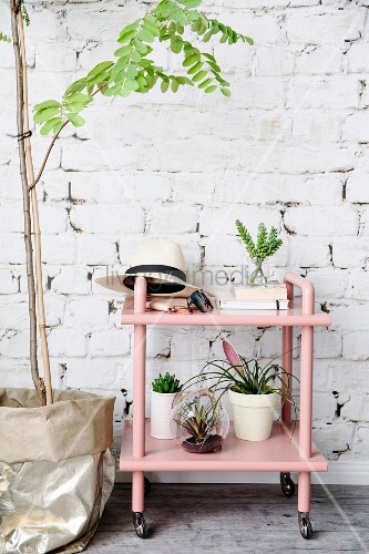 Rosafarbener Servierwagen mit Pflanzen vor einer Backsteinwand