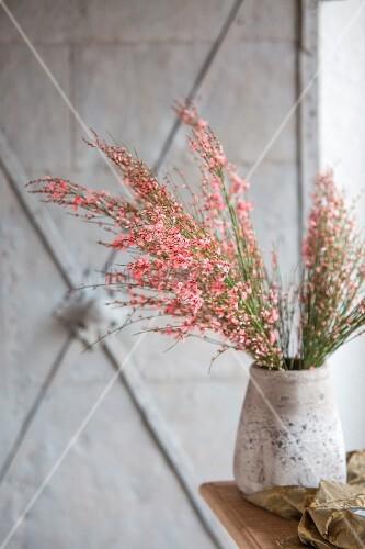 Pink-flowering branches in grey vase