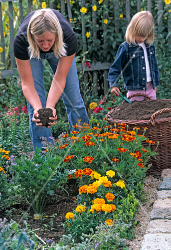 Young woman is sprinkling compost in turnips