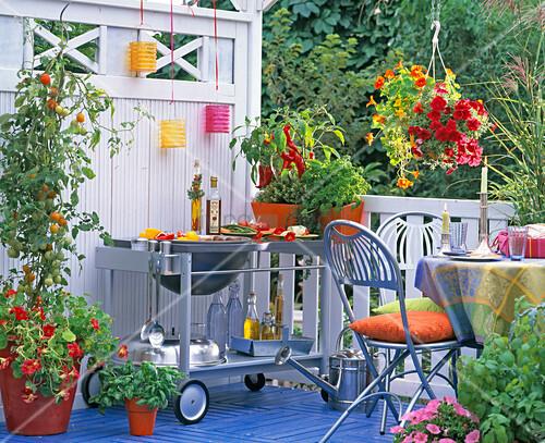 Outdoor Küche Balkon : Outdoor küche mit smoker outdoor küche gasflasche die outdoor