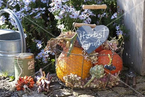Autumnal harvest basket with pumpkins, artichoke
