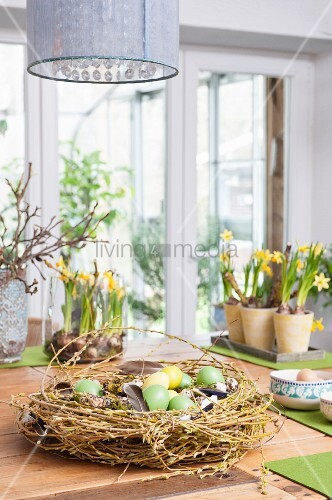 Wreath of Forsythia, dyed Easter eggs and bird feathers on wooden table