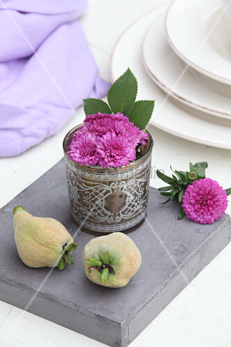Pink asters in ornate drinking glass and two quinces