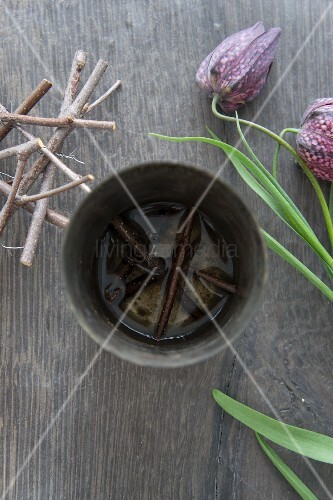Steckhilfe aus Ästchen in Zinkübertopf und Schachbrettblume