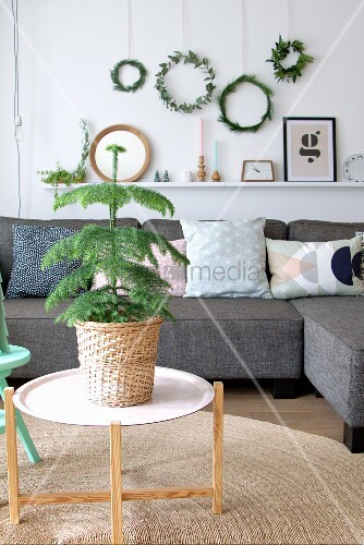 Small Christmas tree in basket in front of grey sofa below wreaths hung on wall