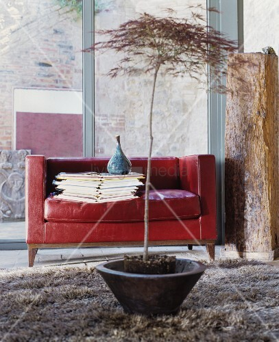 rotes ledersofa mit b cherstapel und bild kaufen 12305664 living4media. Black Bedroom Furniture Sets. Home Design Ideas