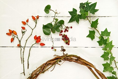 Rose hips, berries, ivy tendrils and willow wreath on white surface