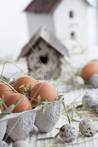 Eggs in egg box next to quail eggs