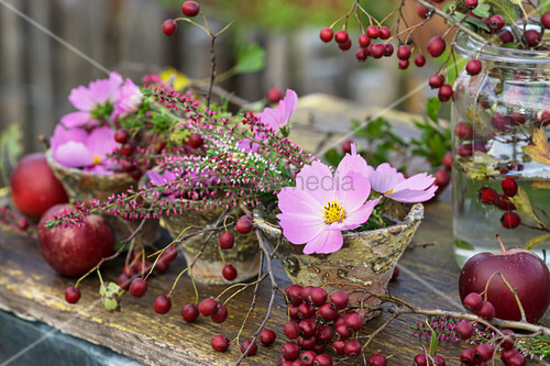 Posies of cosmos and heather in resin pots