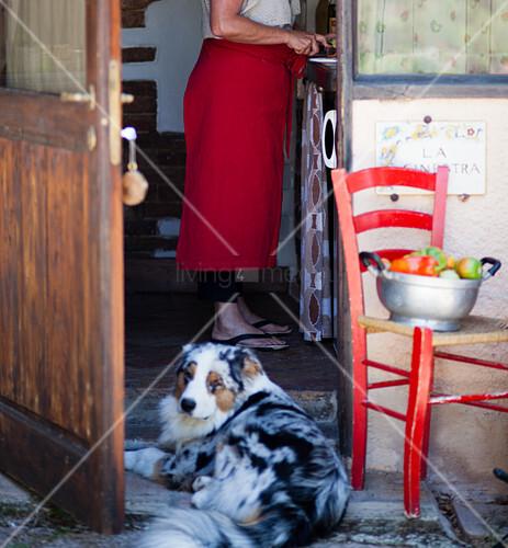 Frau schneidet Gemüse in rustikaler Küche mit Hund