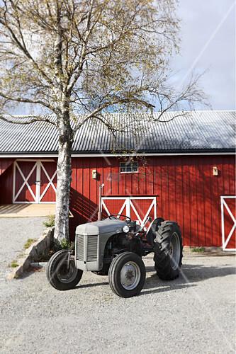 Traktor vor einer Birke und einer roten Scheune
