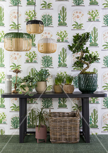 Tapete mit Pflanzenmotiv, davor Tisch mit Zimmerpflanzen