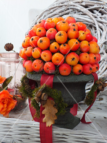 Arrangement of crab apples in urn
