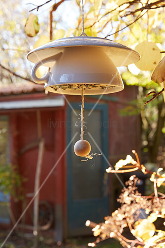 Bird feeder made from cup and saucer