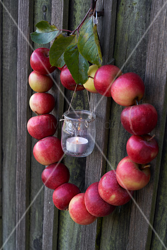 Heart-shaped wreath of apples