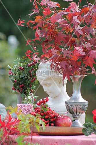 Autumnal still-life arrangement of ornamental maple, rose hips and bust of a girl in garden