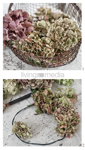 Making a hydrangea wreath