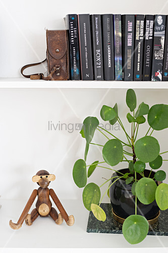 Wooden monkey next to houseplant on bookshelves