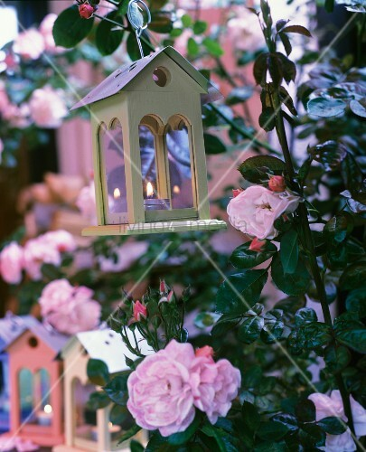 Tealight holders shaped like birdhouses amongst flowering roses