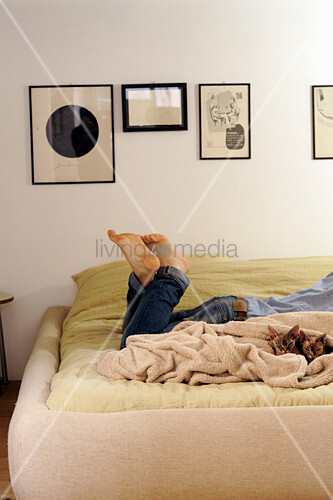 Person and two cats lying on double bed