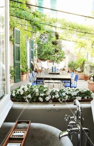 View of plants on Mediterranean terrace seen through bathroom window