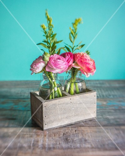 Ranunculus in glass bottles in wooden box against turquoise background