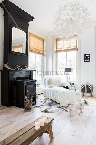 Hunde im gemütlichen Wohnzimmer mit schwarzem Kamin