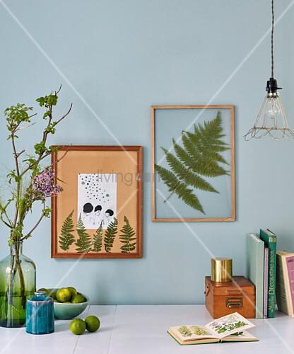 gepresste farnbl tter hinter glas in bild kaufen. Black Bedroom Furniture Sets. Home Design Ideas