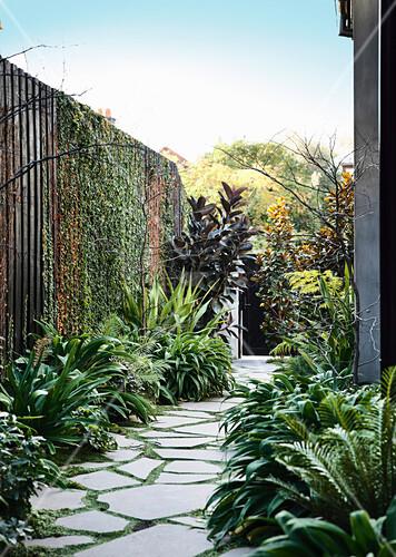 Gartenweg Mit Steinplatten Umgeben Von Bild Kaufen 12369494