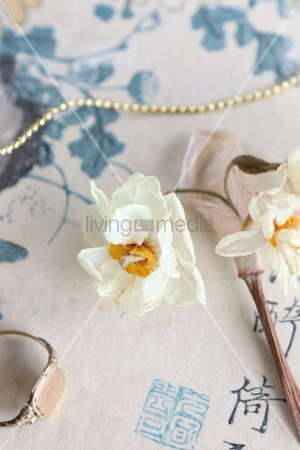 Dried narcissus and string of beads on Oriental paper