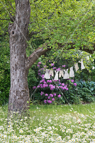 Dolls' clothes on clothes line tied to tree above flowering meadow