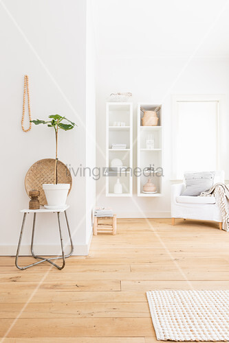 House plant on chair in foreground and white wall-mounted shelved next to armchair in background